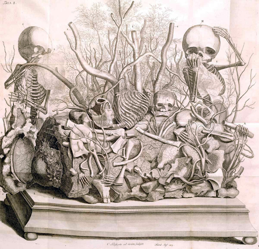 Engraving by Cornelius Huyberts of one of Frederick Ruysch's anatomical dioramas; public domain